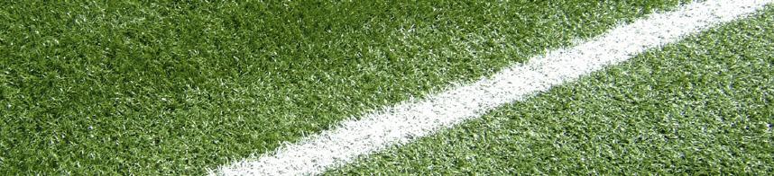 grass 05.jpg