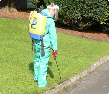 Herbicide Application, weed killer