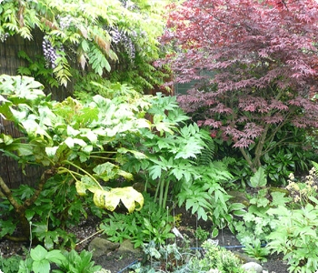 Soft Landscaping Bolton